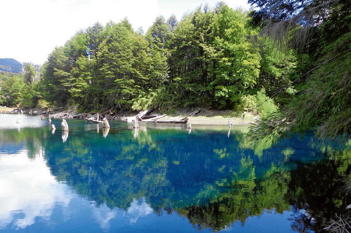 Conguillío es escogido como uno de los parques más lindos del mundo por National Geographic