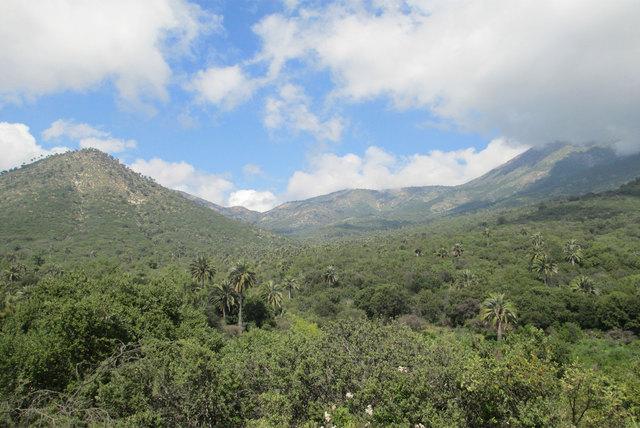 Mirador del Valle de Ocoa y Olmué