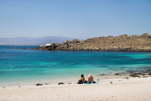 Punta de Choros e Isla Damas