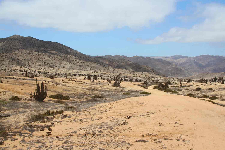 Turismo al rescate de Atacama