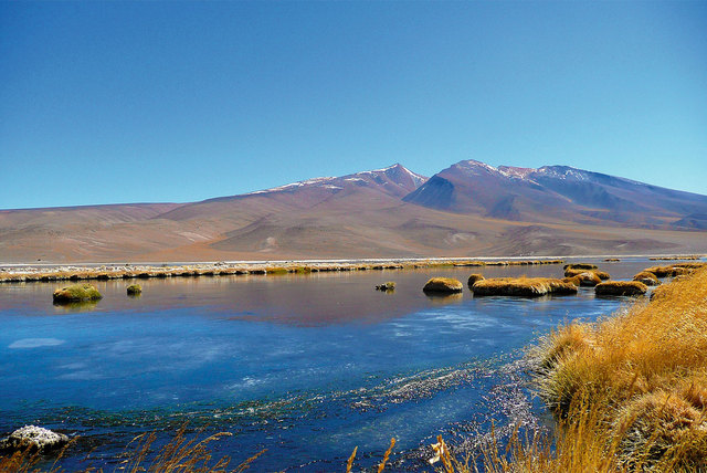 Tramo Sendero de Chile, Laguna Santa Rosa - Salar de Maricunga