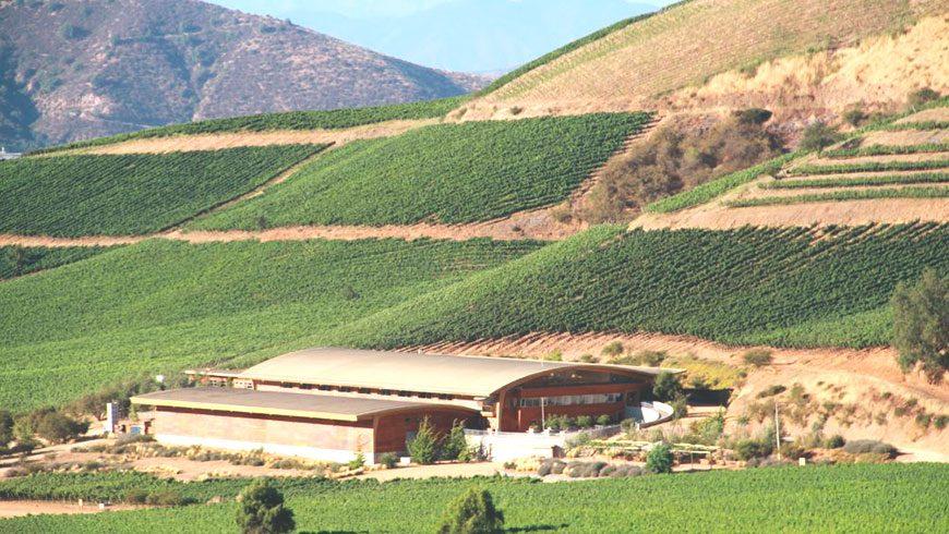 Conoce las nuevas rutas del vino en el Valle del Maipo