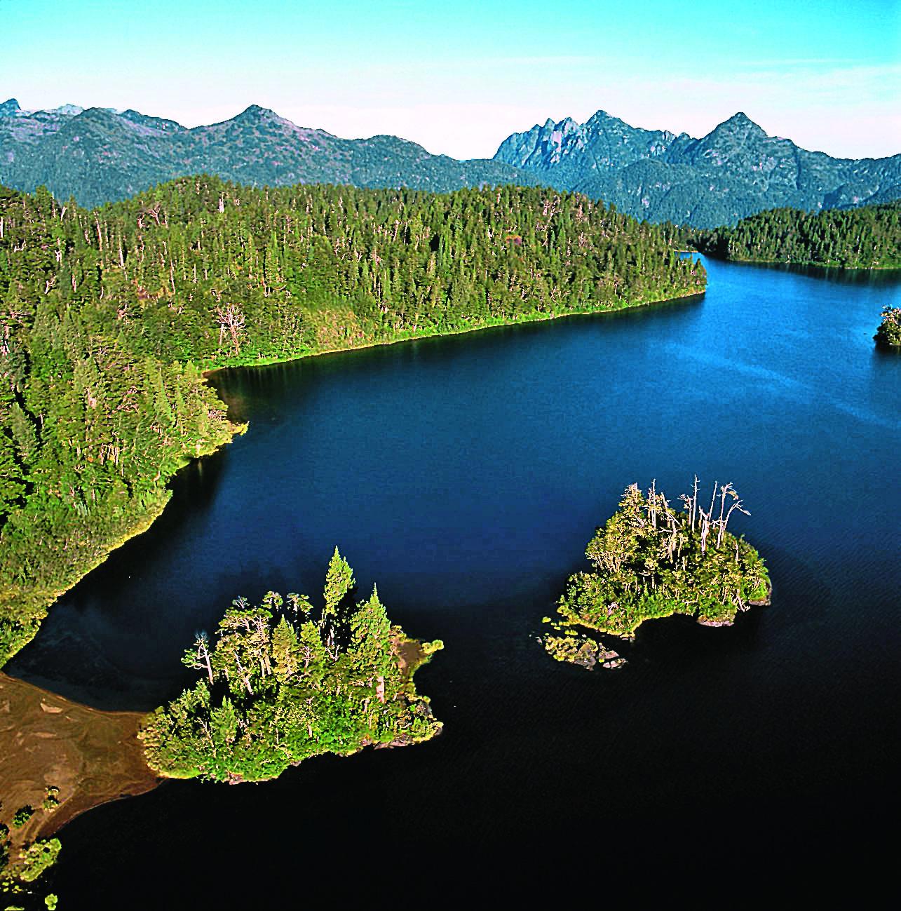 Parque Nacional Alerce Andino Credito Grupo-Copesa