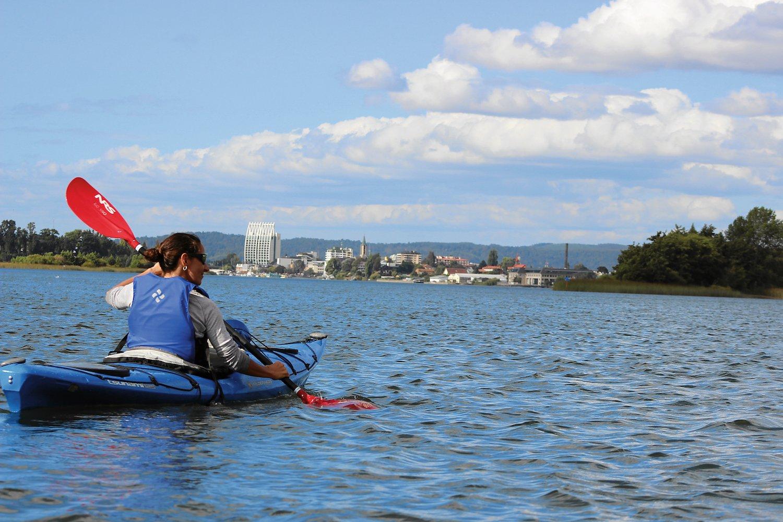 kayak río Valdivia