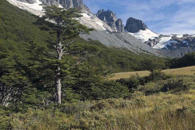 Travesía Cerro Castillo
