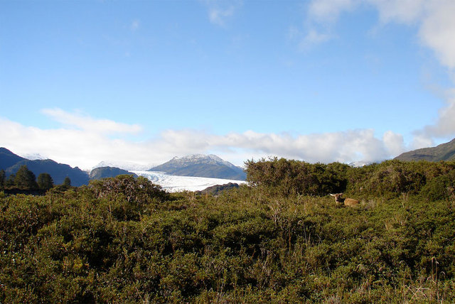 Senderos en Parque Nacional Bernardo O'Higgins